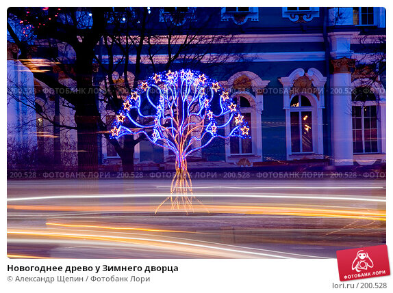 Новогоднее древо у Зимнего дворца, эксклюзивное фото № 200528, снято 15 декабря 2007 г. (c) Александр Щепин / Фотобанк Лори