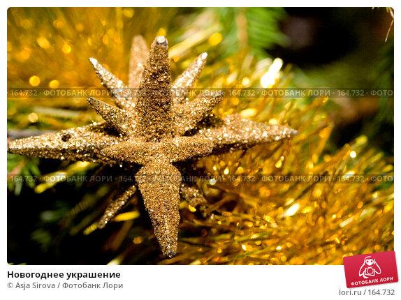 Новогоднее украшение, фото № 164732, снято 24 декабря 2007 г. (c) Asja Sirova / Фотобанк Лори