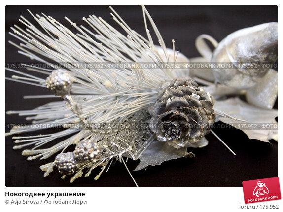 Новогоднее украшение, фото № 175952, снято 13 января 2008 г. (c) Asja Sirova / Фотобанк Лори