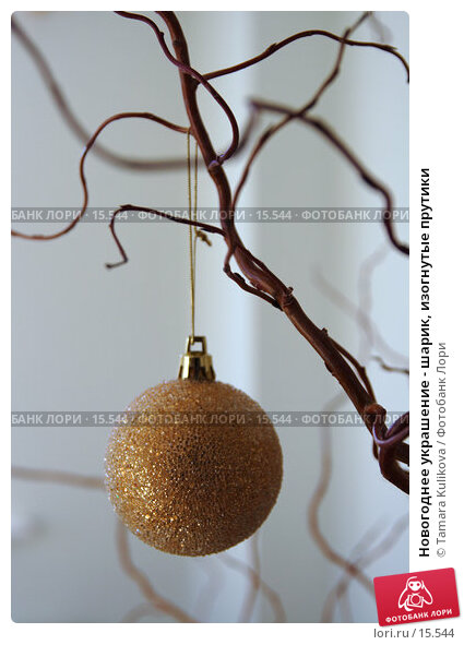 Новогоднее украшение - шарик, изогнутые прутики, фото № 15544, снято 17 декабря 2006 г. (c) Tamara Kulikova / Фотобанк Лори