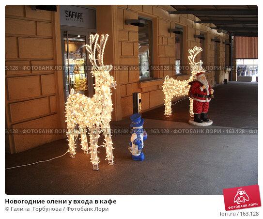 Новогодние олени у входа в кафе, фото № 163128, снято 24 декабря 2006 г. (c) Галина  Горбунова / Фотобанк Лори