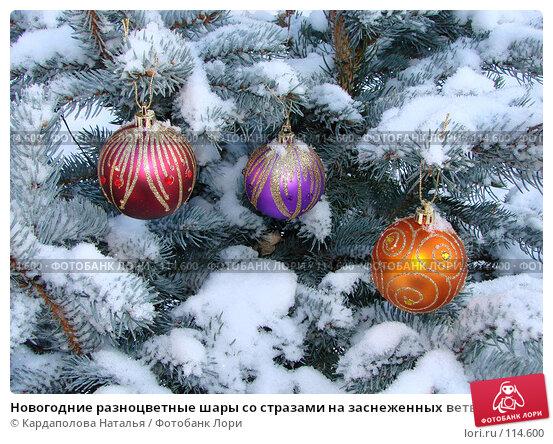 Новогодние разноцветные шары со стразами на заснеженных ветвях ели, фото № 114600, снято 12 ноября 2007 г. (c) Кардаполова Наталья / Фотобанк Лори