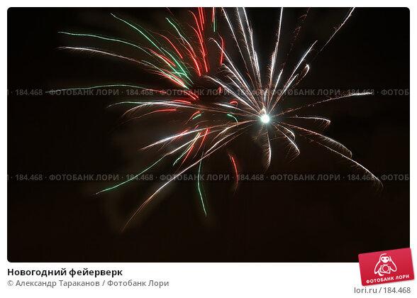 Купить «Новогодний фейерверк», эксклюзивное фото № 184468, снято 20 апреля 2018 г. (c) Александр Тараканов / Фотобанк Лори
