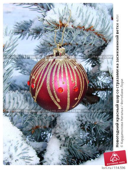 Новогодний красный шар со стразами на заснеженной ветке ели. Стоковое фото, фотограф Кардаполова Наталья / Фотобанк Лори