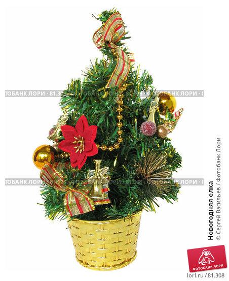 Купить «Новогодняя елка», фото № 81308, снято 1 сентября 2007 г. (c) Сергей Васильев / Фотобанк Лори