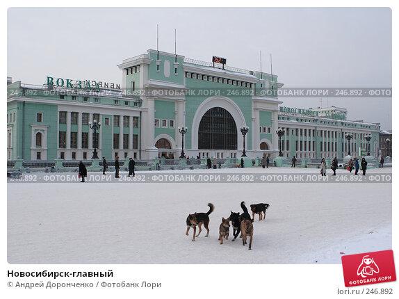 Новосибирск-главный, фото № 246892, снято 18 января 2007 г. (c) Андрей Доронченко / Фотобанк Лори