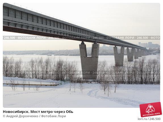 Новосибирск. Мост метро через Обь, фото № 246500, снято 18 января 2007 г. (c) Андрей Доронченко / Фотобанк Лори