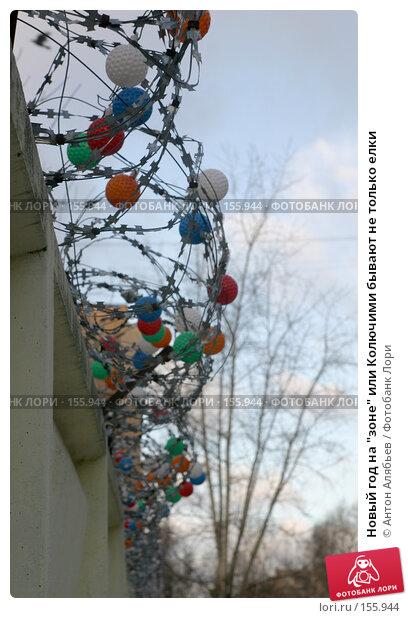 """Новый год на """"зоне"""" или Колючими бывают не только елки, фото № 155944, снято 21 декабря 2007 г. (c) Антон Алябьев / Фотобанк Лори"""