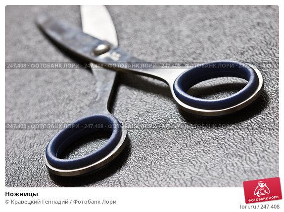 Ножницы, фото № 247408, снято 11 февраля 2005 г. (c) Кравецкий Геннадий / Фотобанк Лори