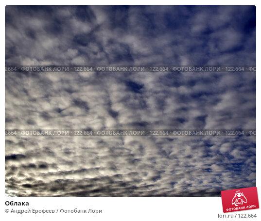 Облака, фото № 122664, снято 22 ноября 2007 г. (c) Андрей Ерофеев / Фотобанк Лори