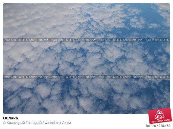 Облака, фото № 240480, снято 24 июля 2017 г. (c) Кравецкий Геннадий / Фотобанк Лори