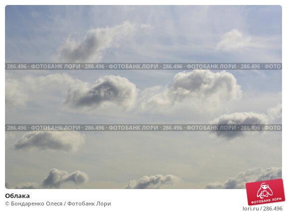 Облака, фото № 286496, снято 14 мая 2008 г. (c) Бондаренко Олеся / Фотобанк Лори