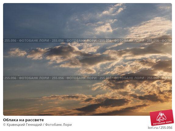 Облака на рассвете, фото № 255056, снято 30 июня 2004 г. (c) Кравецкий Геннадий / Фотобанк Лори