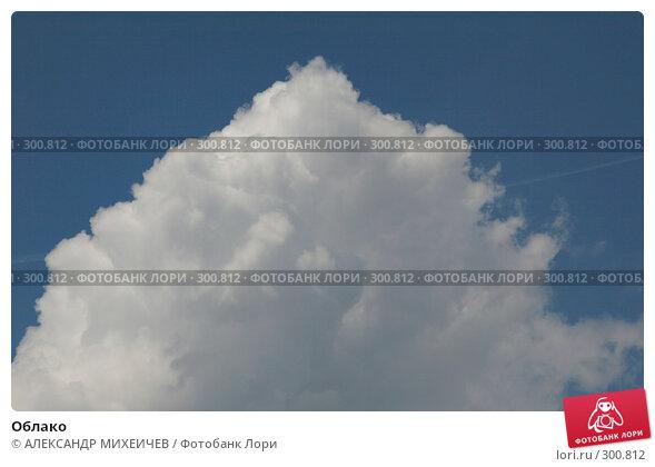 Купить «Облако», фото № 300812, снято 18 мая 2008 г. (c) АЛЕКСАНДР МИХЕИЧЕВ / Фотобанк Лори
