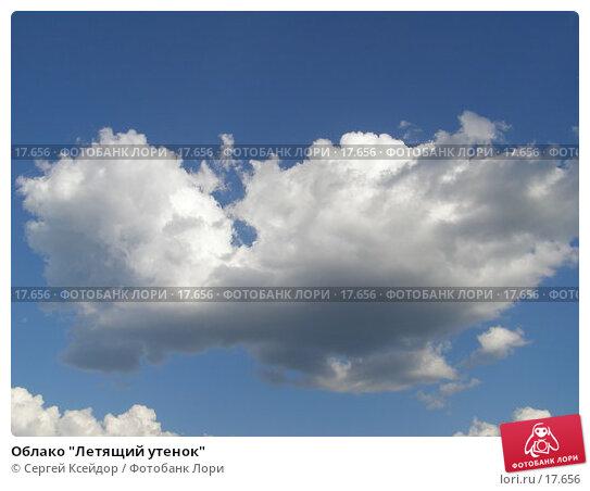 "Облако ""Летящий утенок"", фото № 17656, снято 15 июня 2006 г. (c) Сергей Ксейдор / Фотобанк Лори"