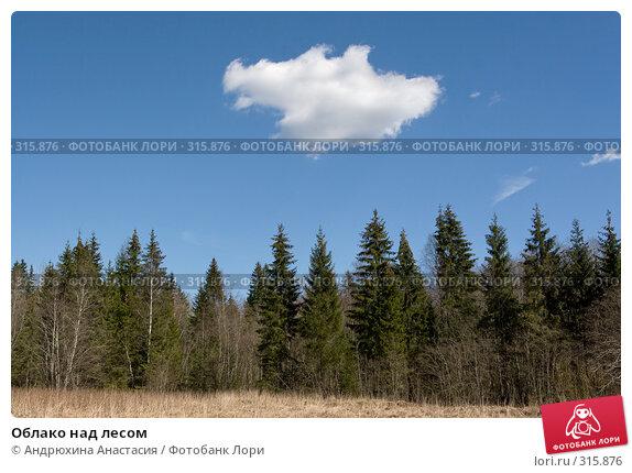 Облако над лесом, фото № 315876, снято 25 апреля 2008 г. (c) Андрюхина Анастасия / Фотобанк Лори