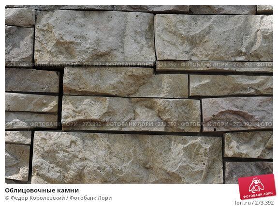Купить «Облицовочные камни», фото № 273392, снято 31 марта 2007 г. (c) Федор Королевский / Фотобанк Лори
