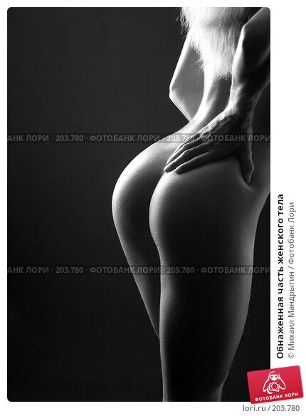 Обнаженная часть женского тела, фото № 203780, снято 6 марта 2005 г. (c) Михаил Мандрыгин / Фотобанк Лори