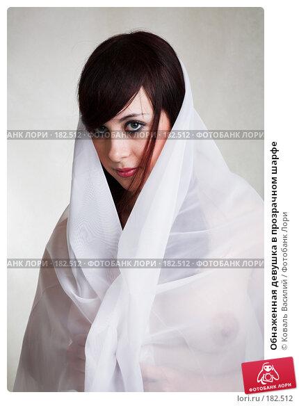 Обнаженная девушка в прозрачном шарфе, фото № 182512, снято 29 ноября 2006 г. (c) Коваль Василий / Фотобанк Лори