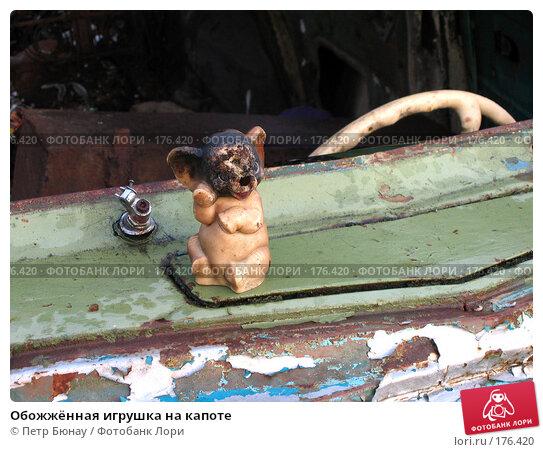 Купить «Обожжённая игрушка на капоте», фото № 176420, снято 30 августа 2003 г. (c) Петр Бюнау / Фотобанк Лори