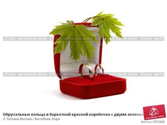 Купить «Обручальные кольца в бархатной красной коробочке с двумя зелеными листьями на белом фоне», фото № 273824, снято 22 апреля 2008 г. (c) Татьяна Белова / Фотобанк Лори
