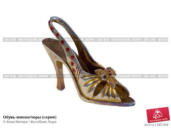 Обувь-миниатюры (серия), фото № 247416, снято 4 марта 2008 г. (c) Анна Мегеря / Фотобанк Лори