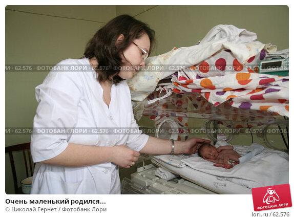 Очень маленький родился..., фото № 62576, снято 14 мая 2007 г. (c) Николай Гернет / Фотобанк Лори