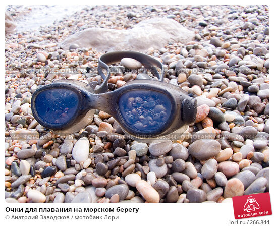 Очки для плавания на морском берегу, фото № 266844, снято 14 сентября 2006 г. (c) Анатолий Заводсков / Фотобанк Лори