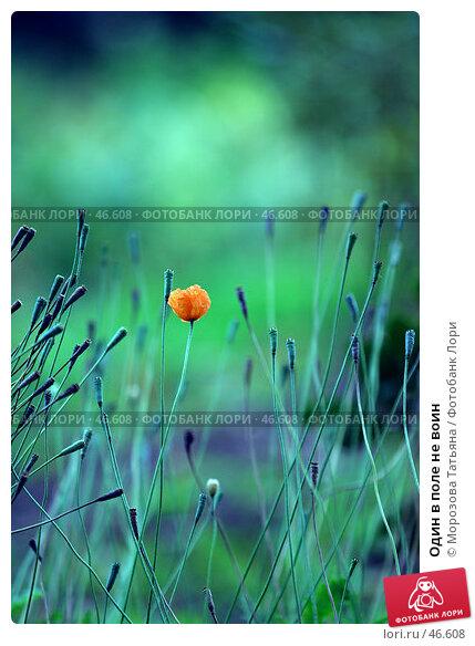 Купить «Один в поле не воин», фото № 46608, снято 7 октября 2004 г. (c) Морозова Татьяна / Фотобанк Лори