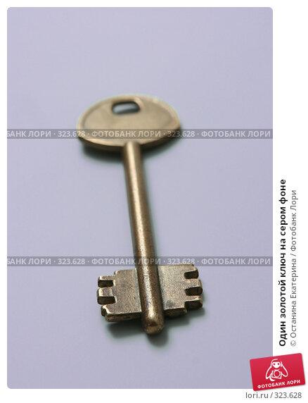 Купить «Один золотой ключ на сером фоне», фото № 323628, снято 23 апреля 2008 г. (c) Останина Екатерина / Фотобанк Лори
