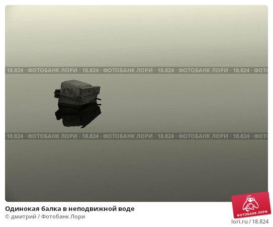 Купить «Одинокая балка в неподвижной воде», фото № 18824, снято 23 марта 2004 г. (c) дмитрий / Фотобанк Лори