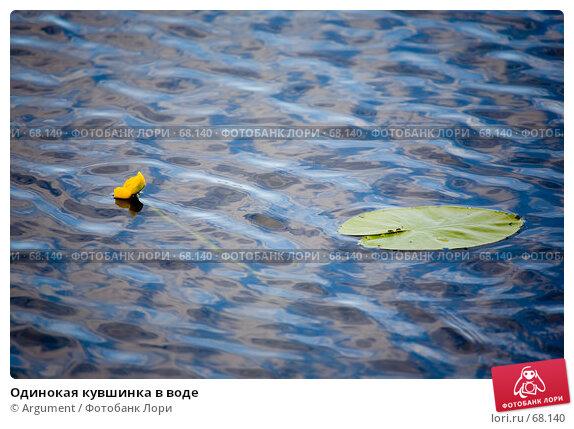Одинокая кувшинка в воде, фото № 68140, снято 22 июня 2007 г. (c) Argument / Фотобанк Лори