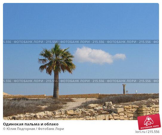 Одинокая пальма и облако, фото № 215556, снято 9 августа 2006 г. (c) Юлия Селезнева / Фотобанк Лори