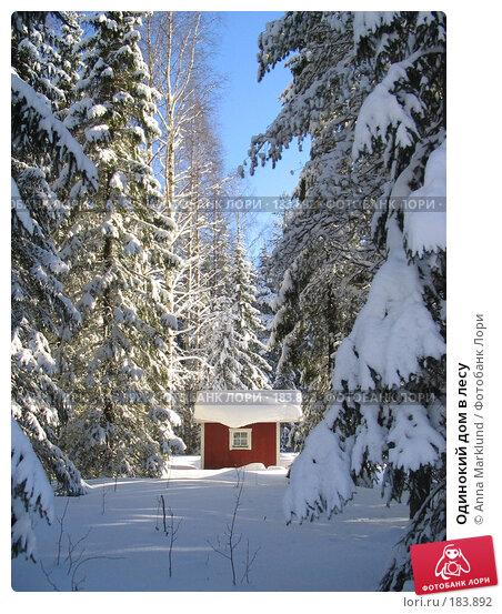 Одинокий дом в лесу, фото № 183892, снято 22 февраля 2005 г. (c) Anna Marklund / Фотобанк Лори