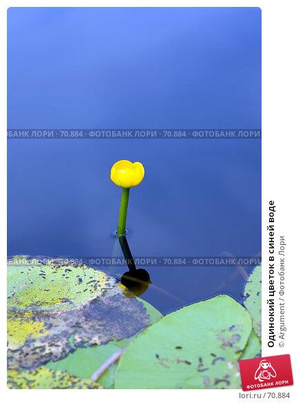 Купить «Одинокий цветок в синей воде», фото № 70884, снято 5 июля 2007 г. (c) Argument / Фотобанк Лори