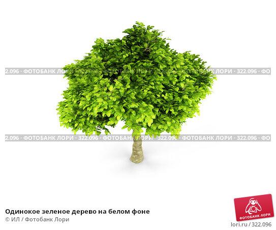 Одинокое зеленое дерево на белом фоне, иллюстрация № 322096 (c) ИЛ / Фотобанк Лори