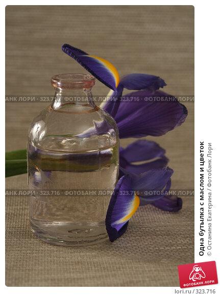 Одна бутылка с маслом и цветок, фото № 323716, снято 28 января 2008 г. (c) Останина Екатерина / Фотобанк Лори