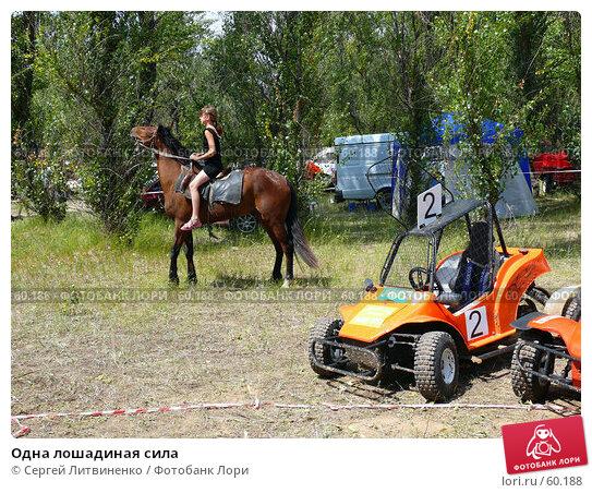 Одна лошадиная сила, фото № 60188, снято 8 июля 2007 г. (c) Сергей Литвиненко / Фотобанк Лори