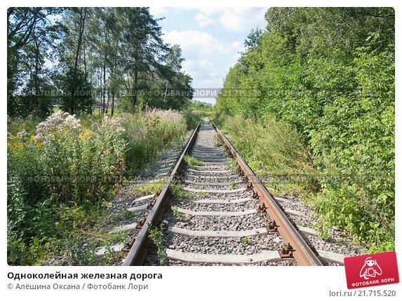 Купить «Одноколейная железная дорога», фото № 21715520, снято 8 августа 2011 г. (c) Алёшина Оксана / Фотобанк Лори