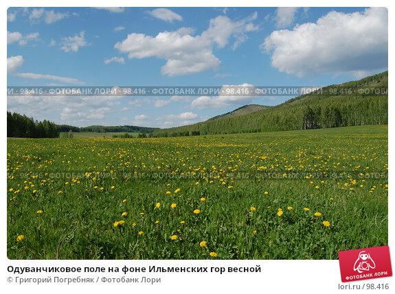 Одуванчиковое поле на фоне Ильменских гор весной, фото № 98416, снято 27 мая 2007 г. (c) Григорий Погребняк / Фотобанк Лори