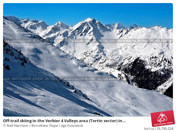 Off-trail skiing in the Verbier 4 Valleys area (Tortin sector) in... Стоковое фото, фотограф Neil Harrison / age Fotostock / Фотобанк Лори