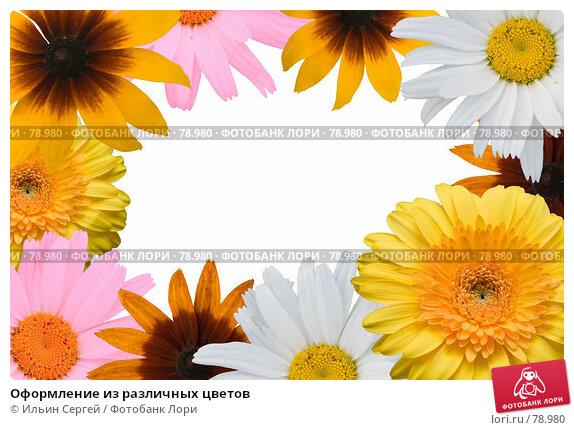 Оформление из различных цветов, фото № 78980, снято 29 марта 2017 г. (c) Ильин Сергей / Фотобанк Лори