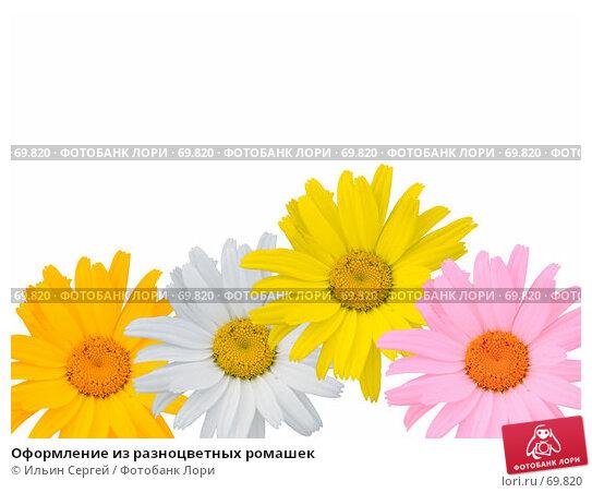 Купить «Оформление из разноцветных ромашек», фото № 69820, снято 26 апреля 2018 г. (c) Ильин Сергей / Фотобанк Лори