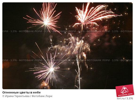Огненные цветы в небе, эксклюзивное фото № 3376, снято 19 ноября 2005 г. (c) Ирина Терентьева / Фотобанк Лори