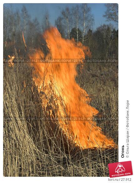 Огонь, фото № 27912, снято 28 марта 2007 г. (c) Ольга Шаран / Фотобанк Лори