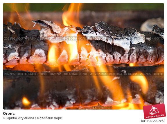 Огонь, фото № 202992, снято 31 июля 2007 г. (c) Ирина Игумнова / Фотобанк Лори