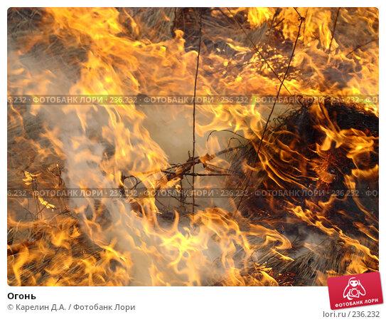 Огонь, фото № 236232, снято 29 марта 2008 г. (c) Карелин Д.А. / Фотобанк Лори