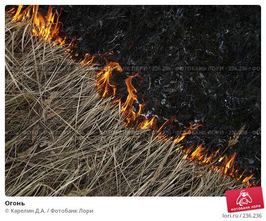 Купить «Огонь», фото № 236236, снято 29 марта 2008 г. (c) Карелин Д.А. / Фотобанк Лори