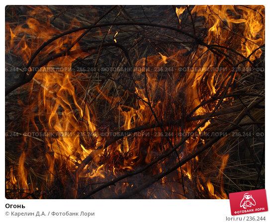 Огонь, фото № 236244, снято 29 марта 2008 г. (c) Карелин Д.А. / Фотобанк Лори