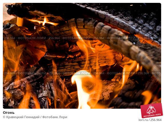 Огонь, фото № 256964, снято 31 октября 2004 г. (c) Кравецкий Геннадий / Фотобанк Лори